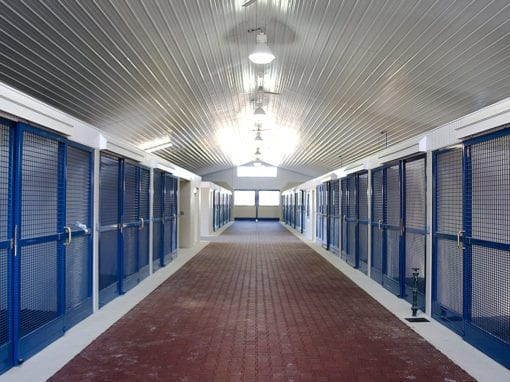 Blue Horse Steel Stalls