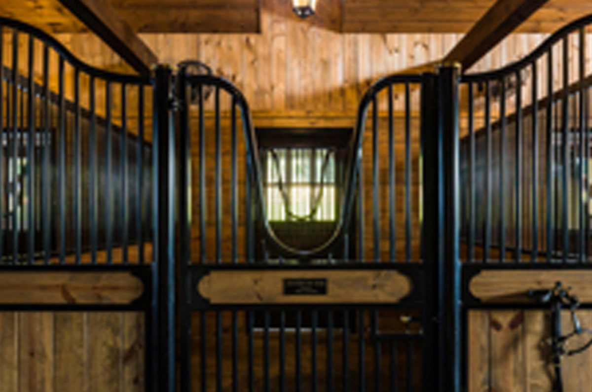 Metal Fabrication for Equestrian Needs