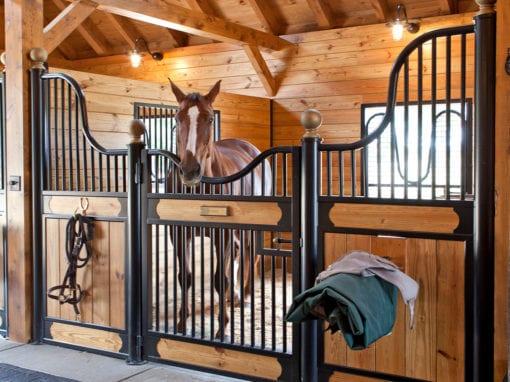 Vasquez Horse Stall