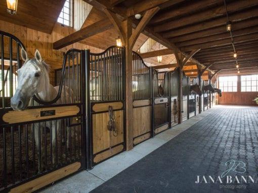 Hinged Horse Stall Doors