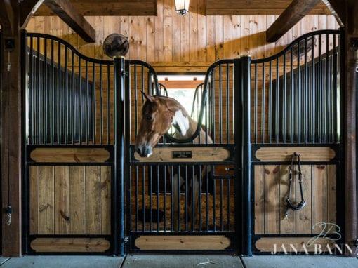 Vassallo Barn Horse Stall