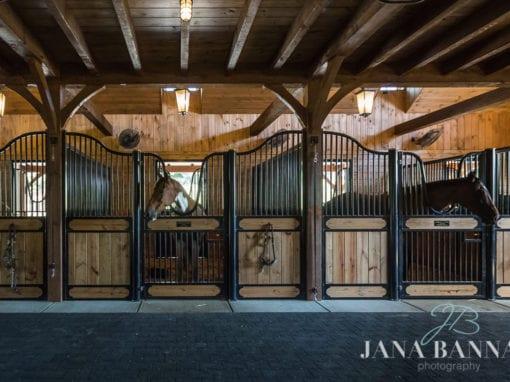 Vassallo Barn Horse Stalls