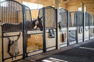Steel Fabrication Company Designs Equestrian Horse Stalls